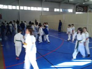 Campeonato Zonal de Cadetes - ADJL